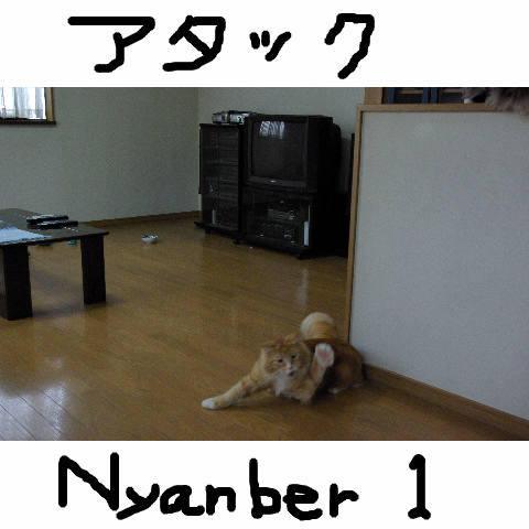 Nyangel21